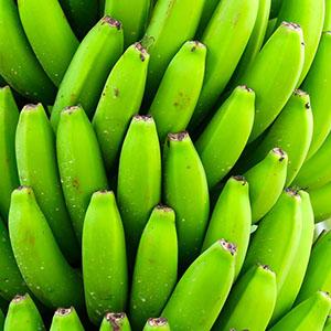 eliminación de etileno en plátanos